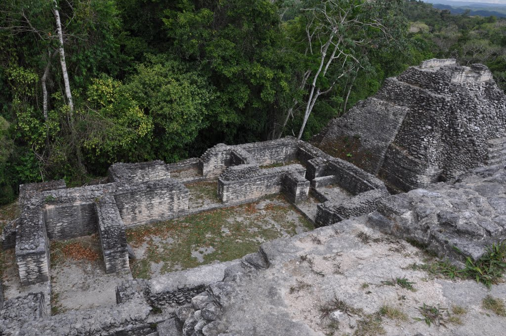 belize tours caracol maya ruins in cayo district