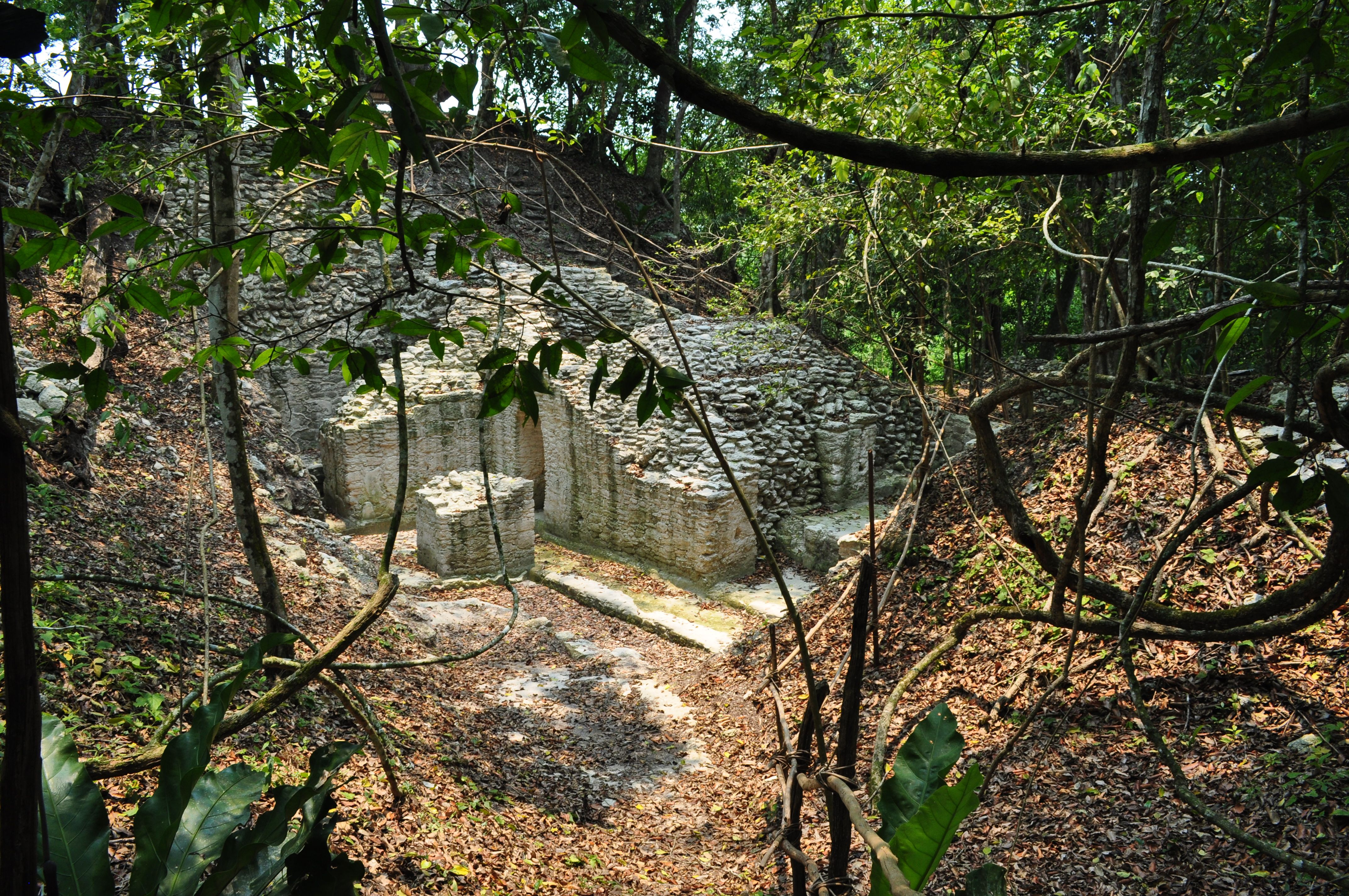 el pilar maya ruins in belize and guatemala