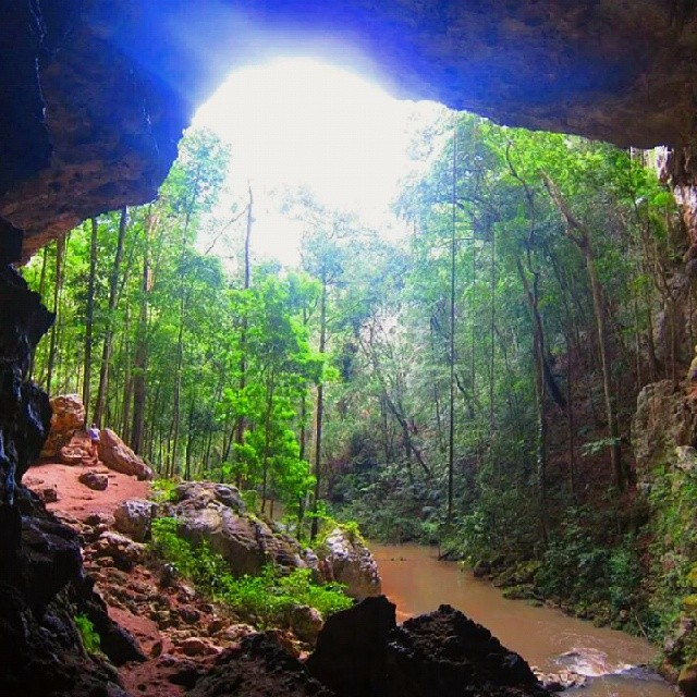 rio frio cave in the mountain pine ridge of belize