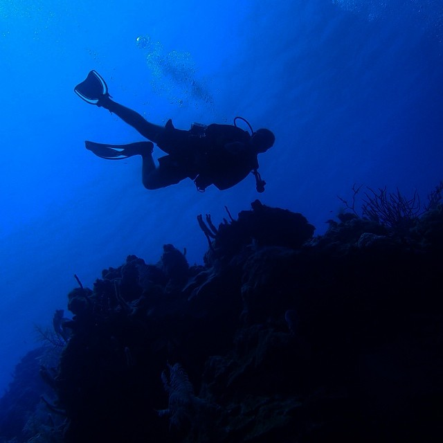 scuba diving in belize