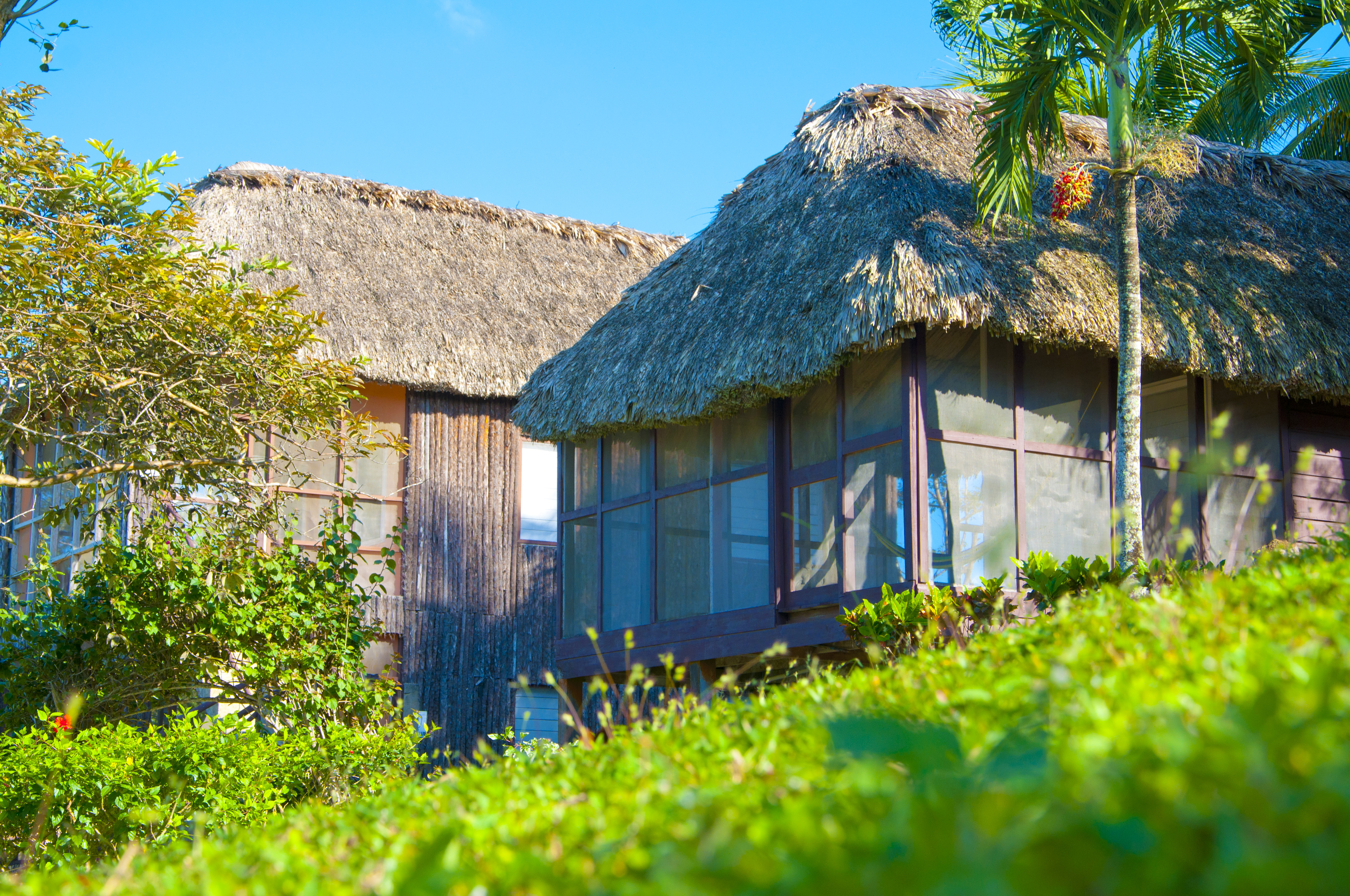 belize vacations at cahal pech