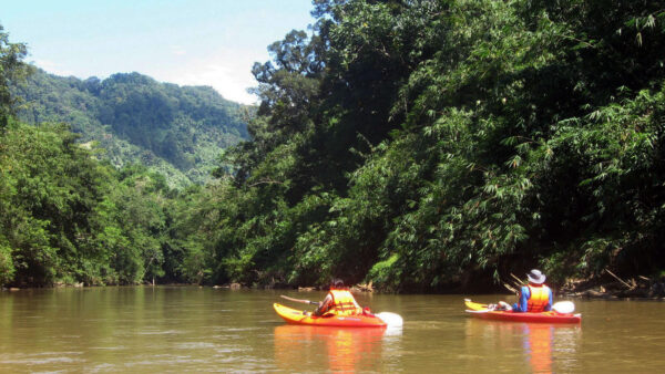Belize River Kayaking Tours