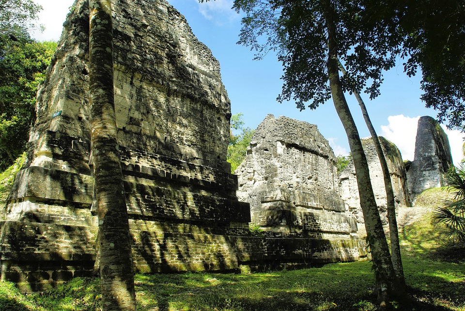 Maya civilization used chocolate as currency