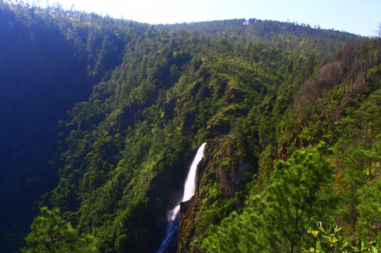 Mountain-Pine-Ridge-in-Belize