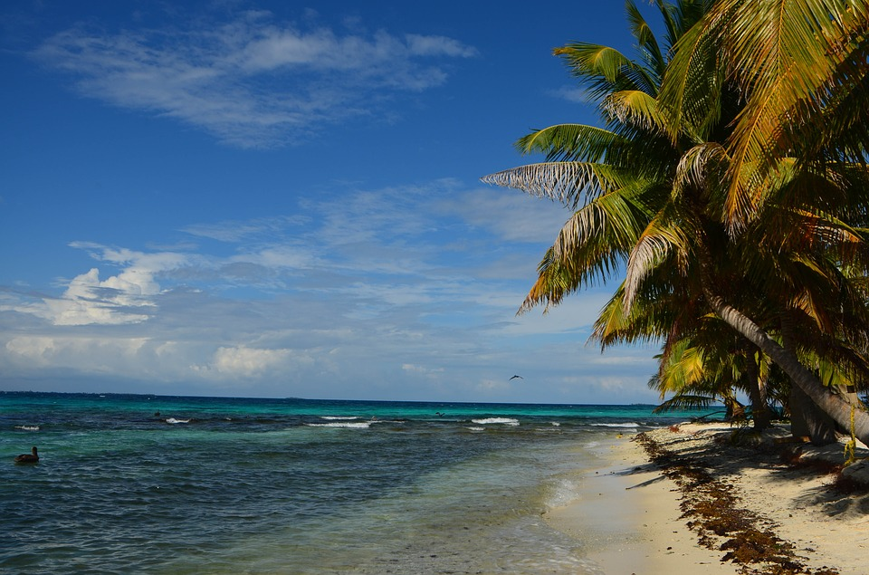 Flights Within South Africa additionally mentarea as well Delta 331 Phoenix Dallas Philadelphia Miami Charlotte Raleigh St Louis Belize City Belize Roundtrip Including All Taxes likewise F Family On The Road Stowe Vermont further Hopkins Belize. on car rentals belize