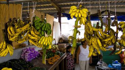 san-ignacio-belize-market