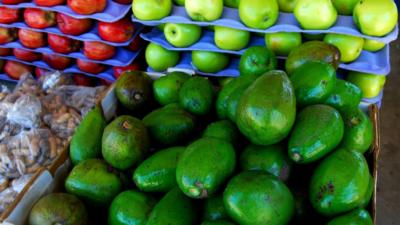 san-ignacio-market-tour